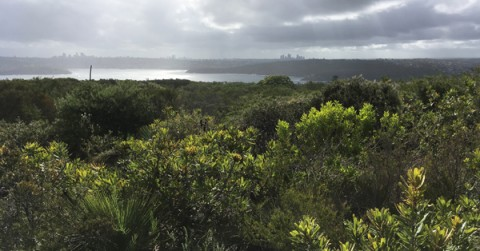 North Head Manly