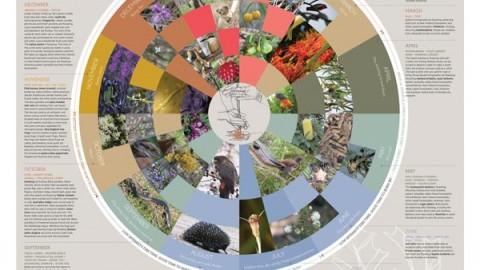 Wattleridge Seasons Calendar