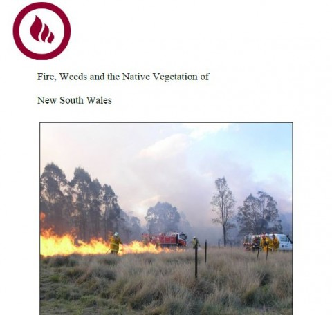 Hotspots Fire and Weeds Review